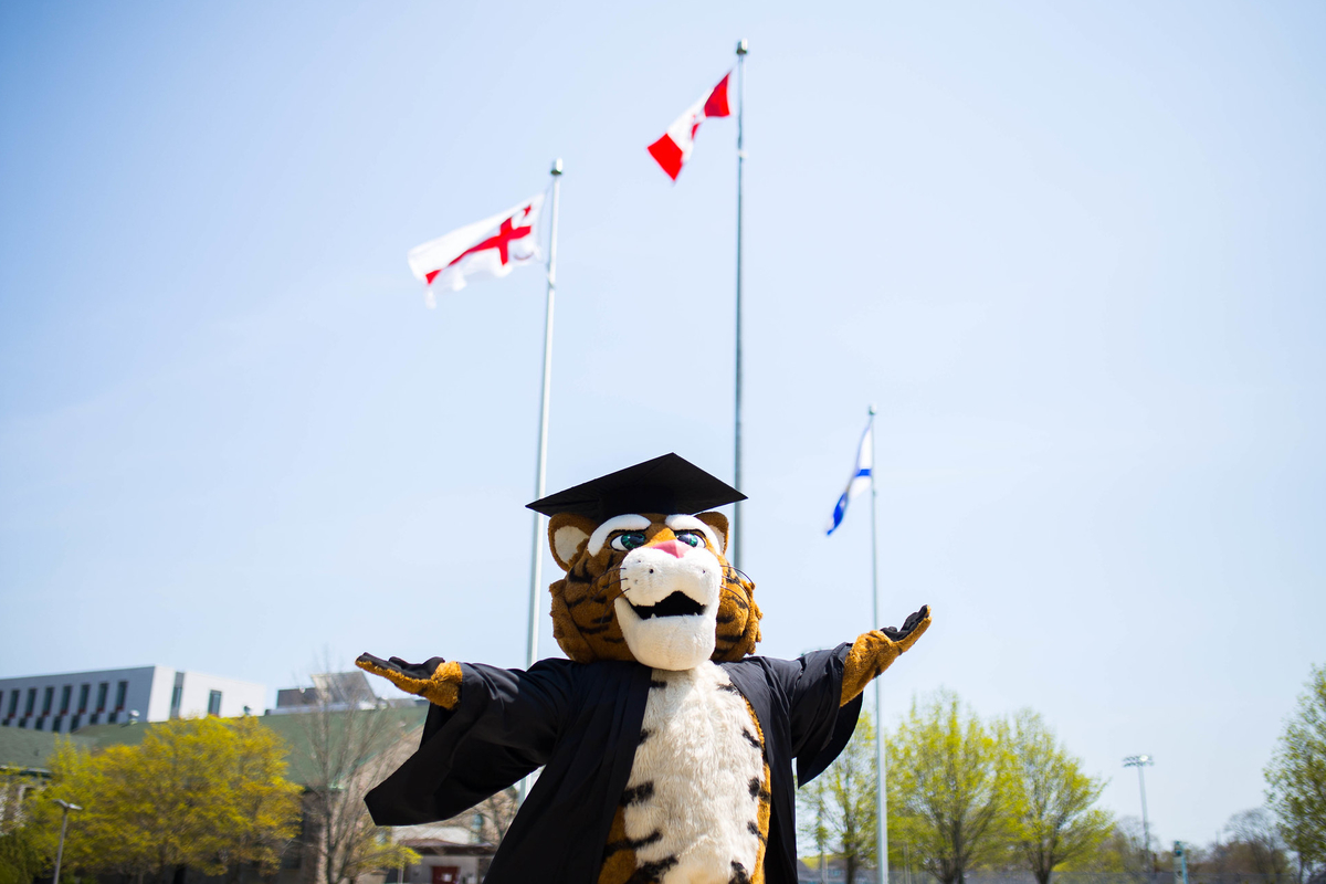The Dal Tiger mascot wears a graduation cap and gown and stands outside, arms spread wide.